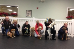 2015 Feb Tues night puppy classJPG
